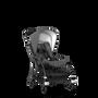 AU - B5 stroller bundleCC GM, ALB