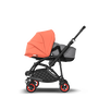 ASIA - Bee 5 seat and bassinet stroller Coral collection, black chassis