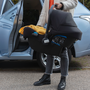 Bugaboo Turtle by Nuna car seat
